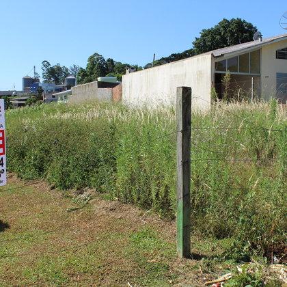 Terreno a venda em Marau-RS