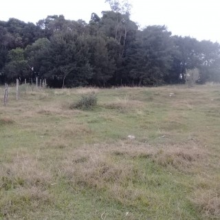 Vende-se terreno Barragem Ernestina