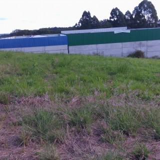 Vende-se terreno no colinas nova marau em Marau