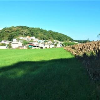 Vende-se área de terra de 5 hectares na cidade de Marau