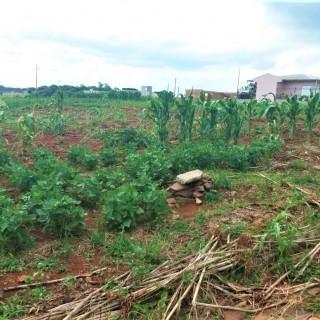 Vende-se excelente terreno no colinas nova Marau
