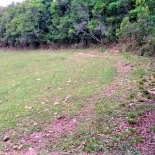 Vende-se Linda área de 7,3 Hectares para Sitio Nova Alvorada