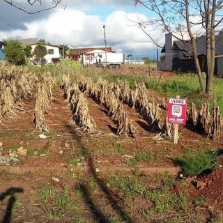 Vende-se terrenos no bairro jardim do sol em Marau
