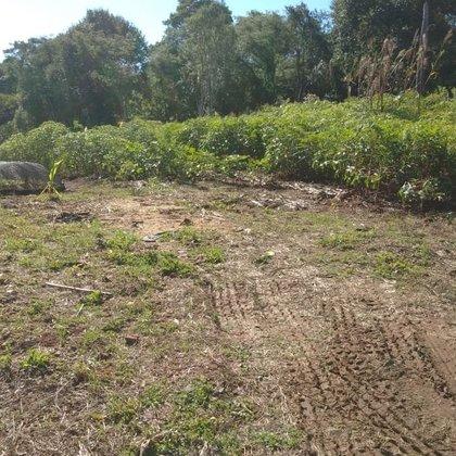 Terreno no Loteamento Ivaldino Savi
