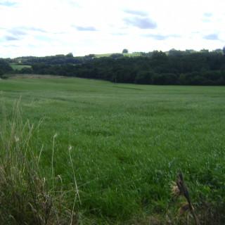 Ótima Área Rural  de 7,60 ha a 01 km da Perimetral saída para Nossa Senhora de Carmo