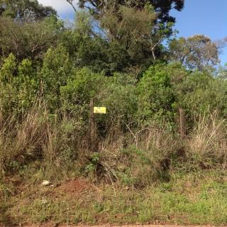 Vende-se Terreno no Bairro Jardim do Sol